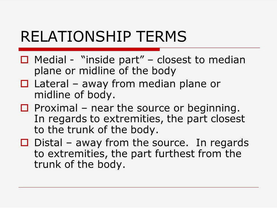 RELATIONSHIP TERMS Medial - inside part – closest to median plane or midline of the body. Lateral – away from median plane or midline of body.