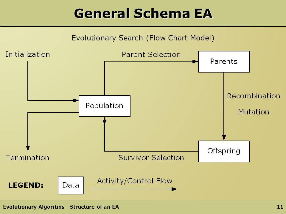 Evolutionary Search (Flow Chart Model)