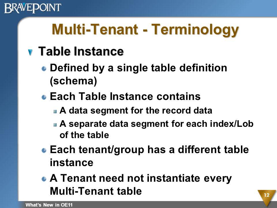 Multi-Tenant - Terminology