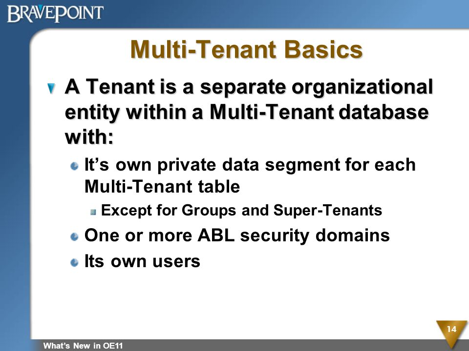 Multi-Tenant Basics A Tenant is a separate organizational entity within a Multi-Tenant database with: