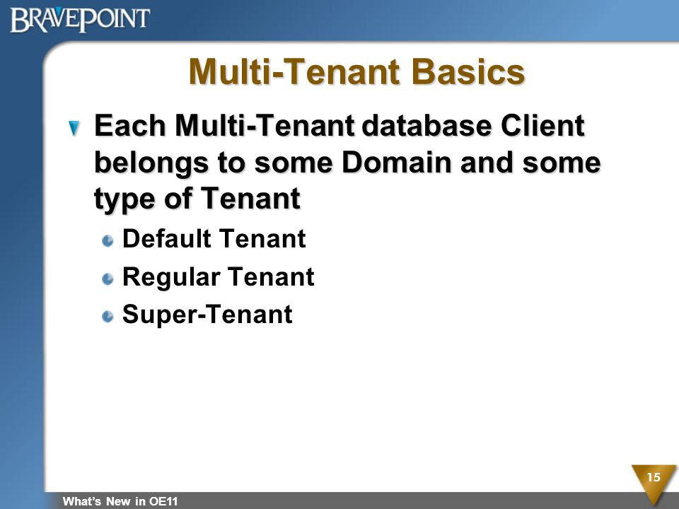 Multi-Tenant Basics Each Multi-Tenant database Client belongs to some Domain and some type of Tenant.