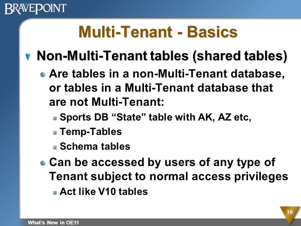 Multi-Tenant - Basics Non-Multi-Tenant tables (shared tables)