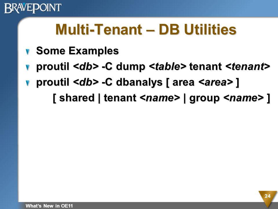 Multi-Tenant – DB Utilities