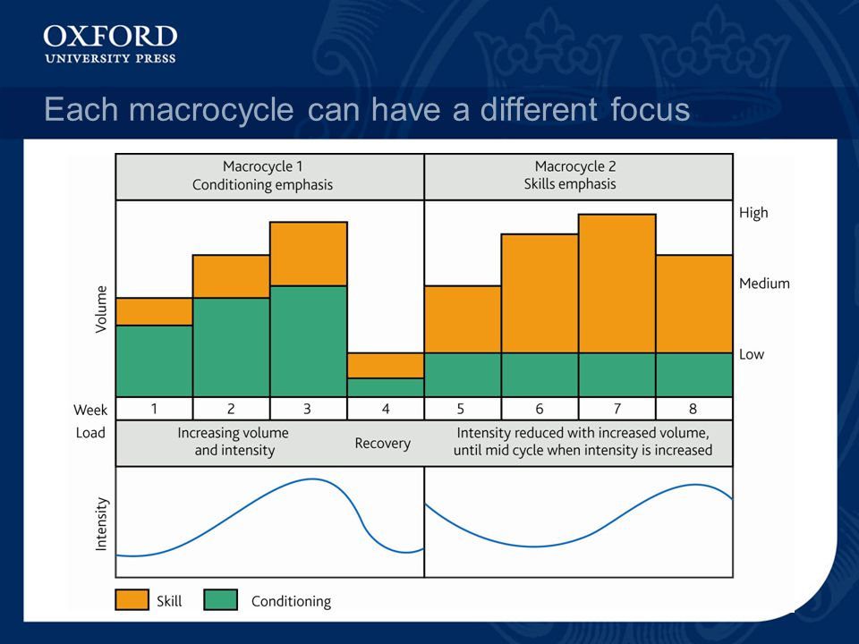 Each macrocycle can have a different focus