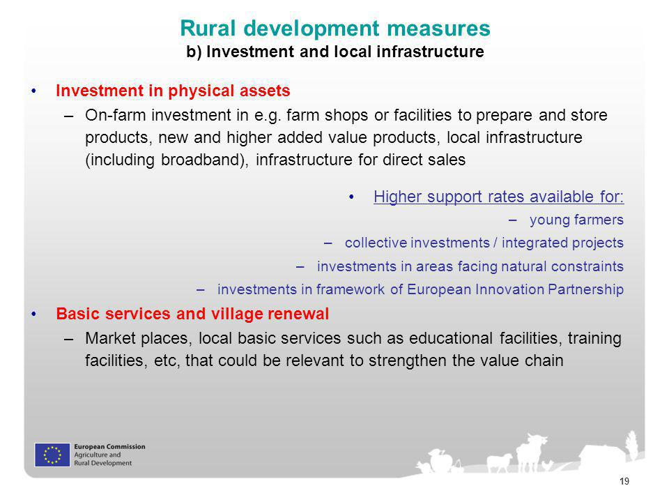Rural development measures b) Investment and local infrastructure