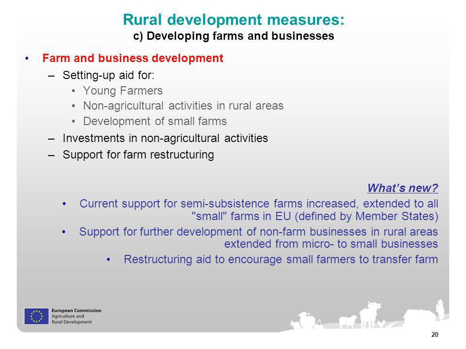 Rural development measures: c) Developing farms and businesses