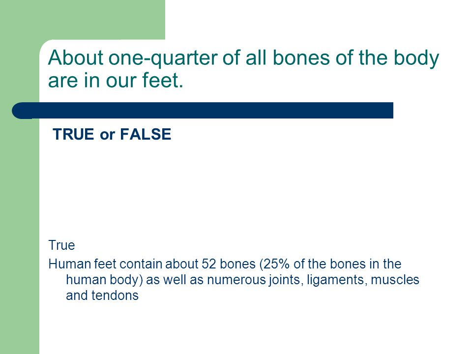 About one-quarter of all bones of the body are in our feet.