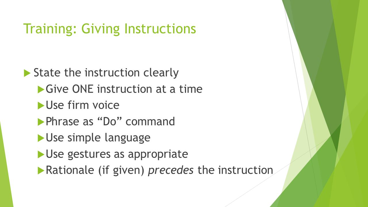Training: Giving Instructions