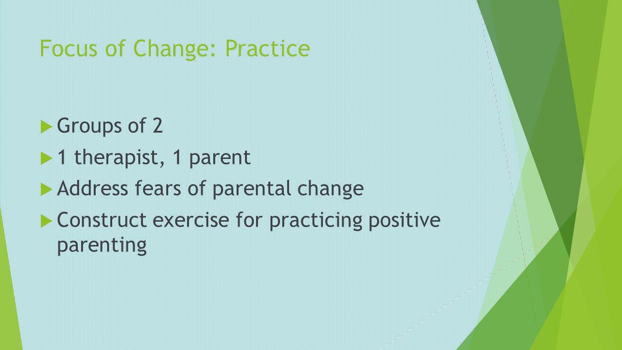 Focus of Change: Practice