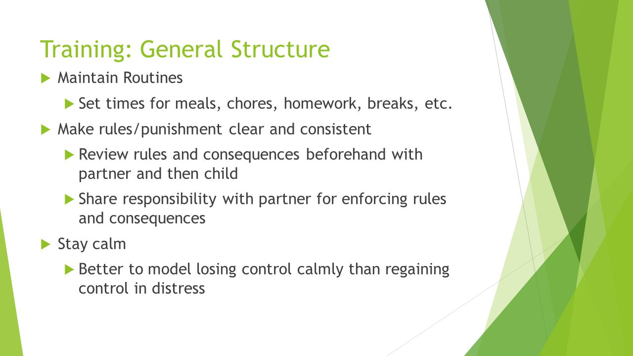 Training: General Structure