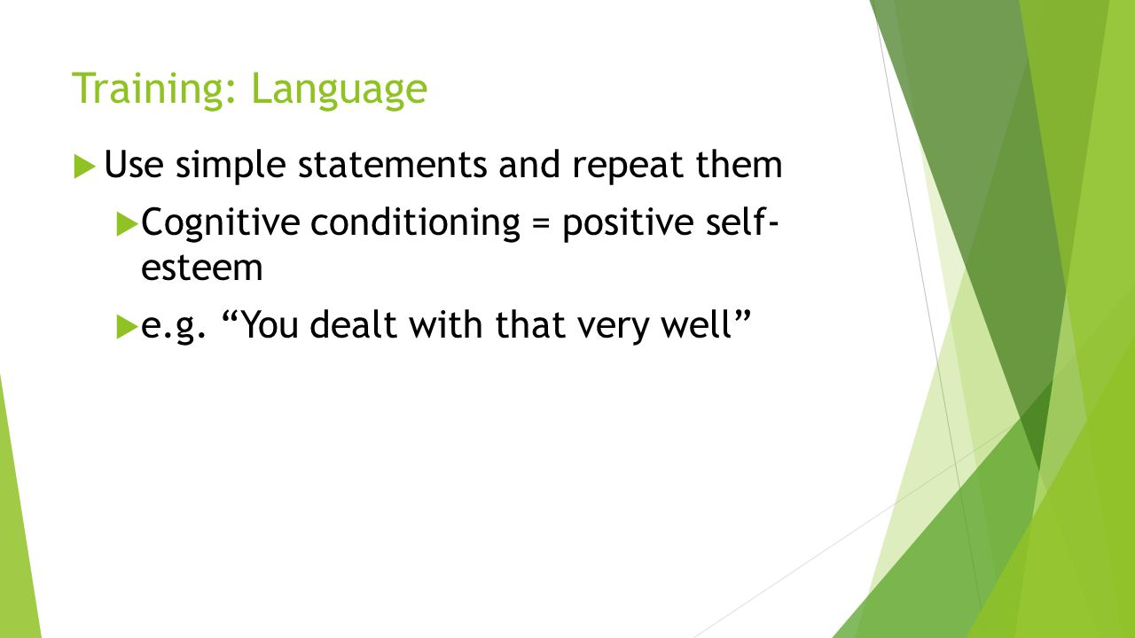 Training: Language Use simple statements and repeat them