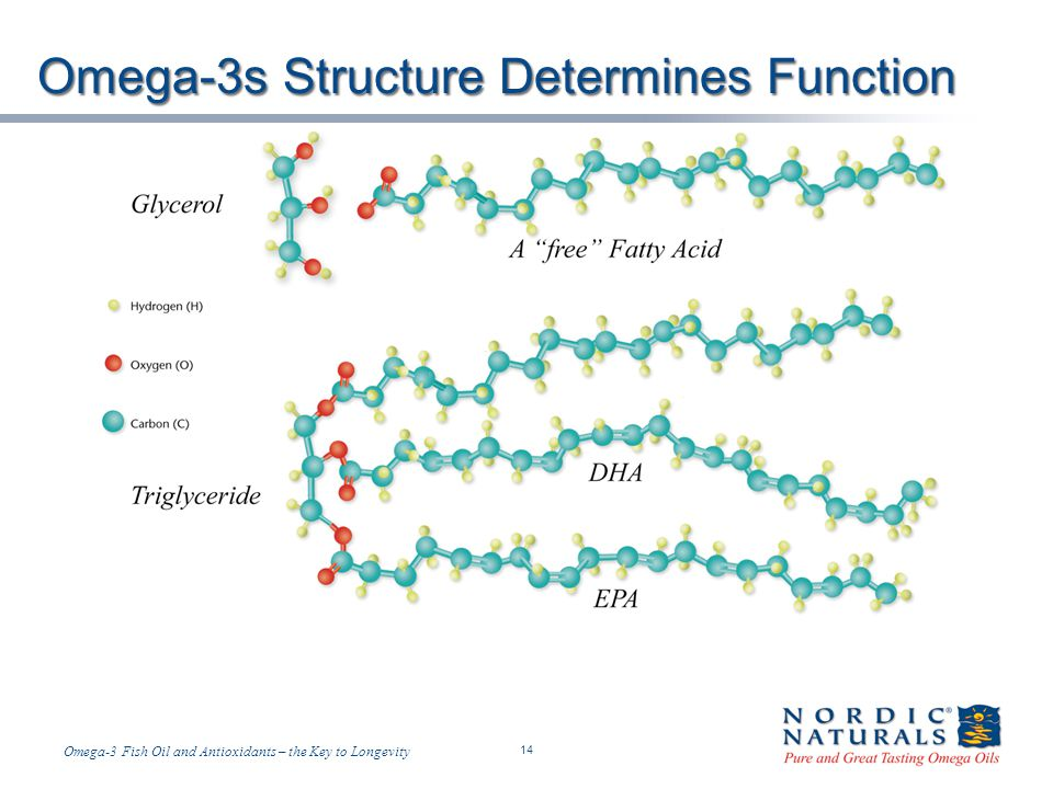 Omega-3s Structure Determines Function