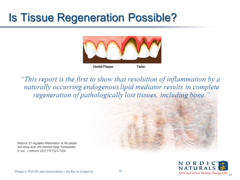 Is Tissue Regeneration Possible