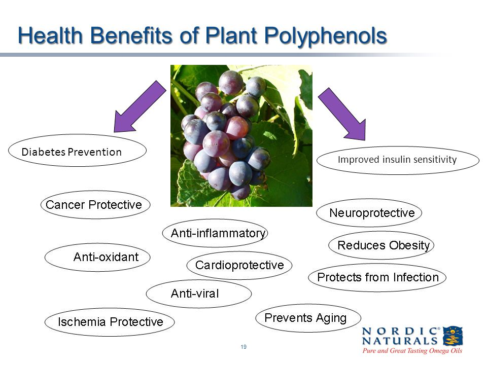 Health Benefits of Plant Polyphenols