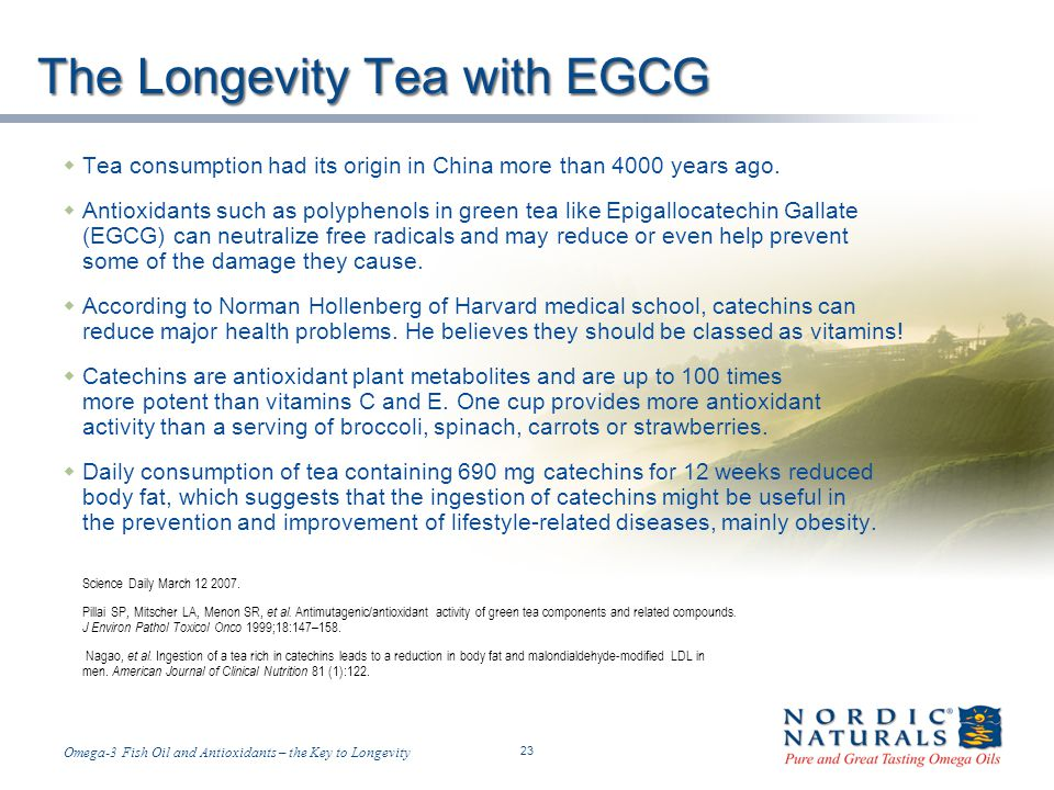 The Longevity Tea with EGCG