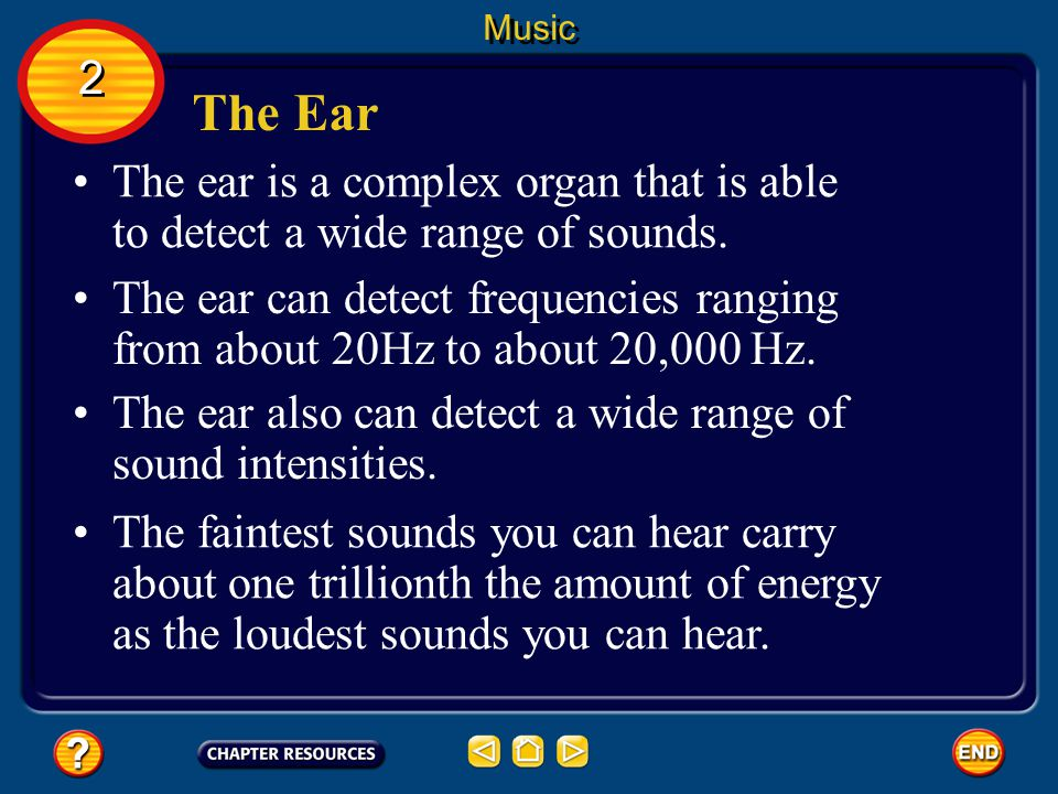 Music 2. The Ear. The ear is a complex organ that is able to detect a wide range of sounds.