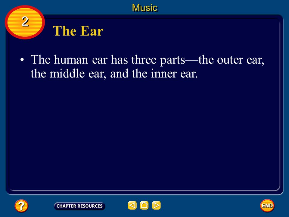 Music 2 The Ear The human ear has three parts—the outer ear, the middle ear, and the inner ear.