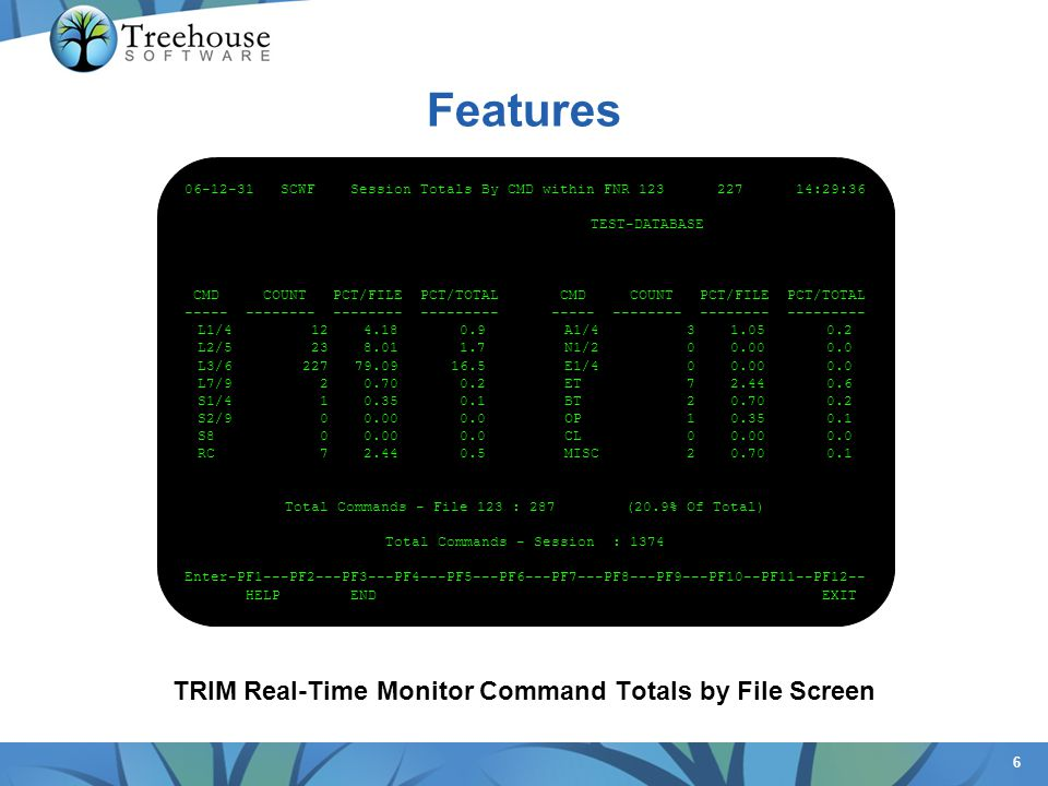 TRIM Real-Time Monitor Command Totals by File Screen