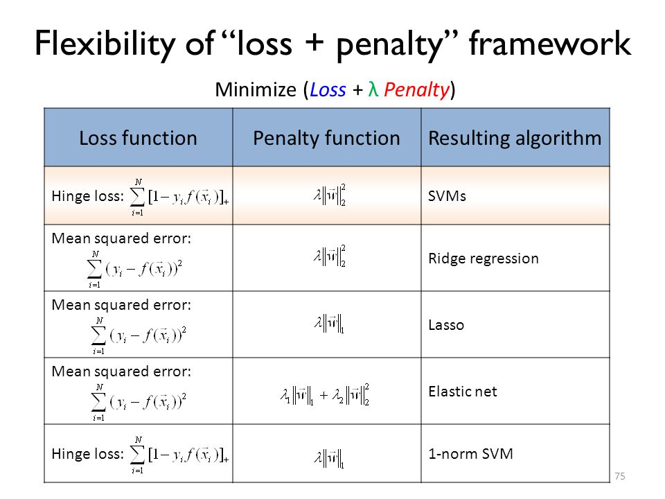 Flexibility of loss + penalty framework