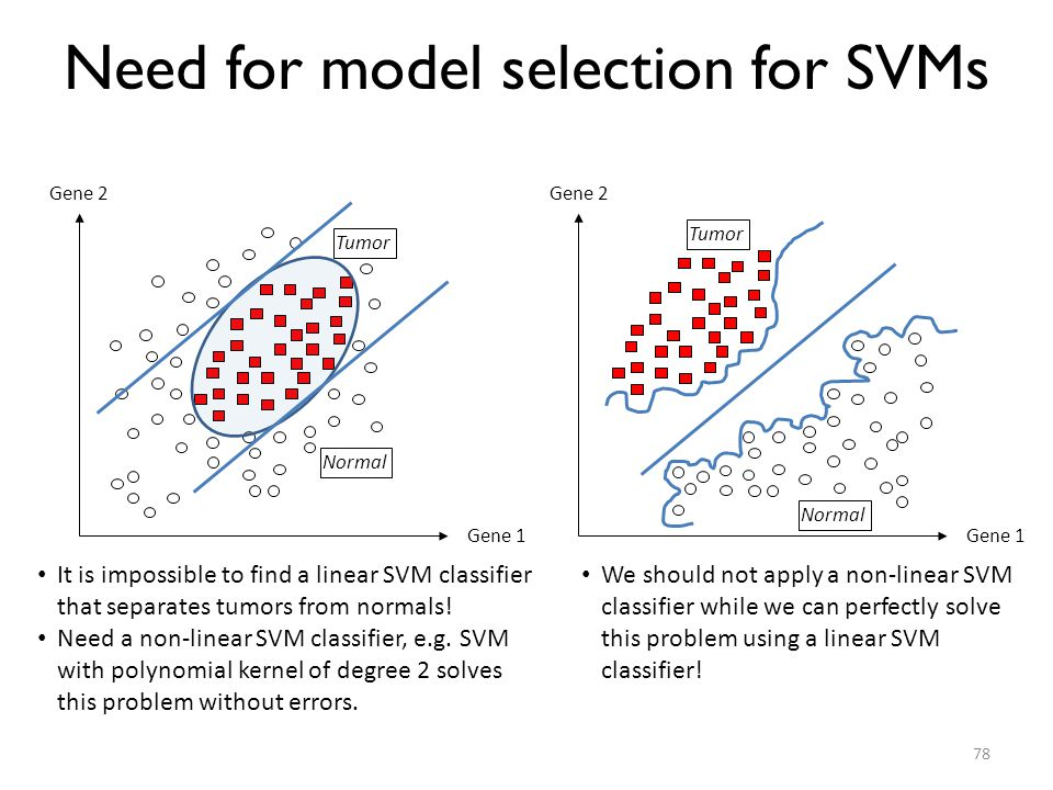 Need for model selection for SVMs