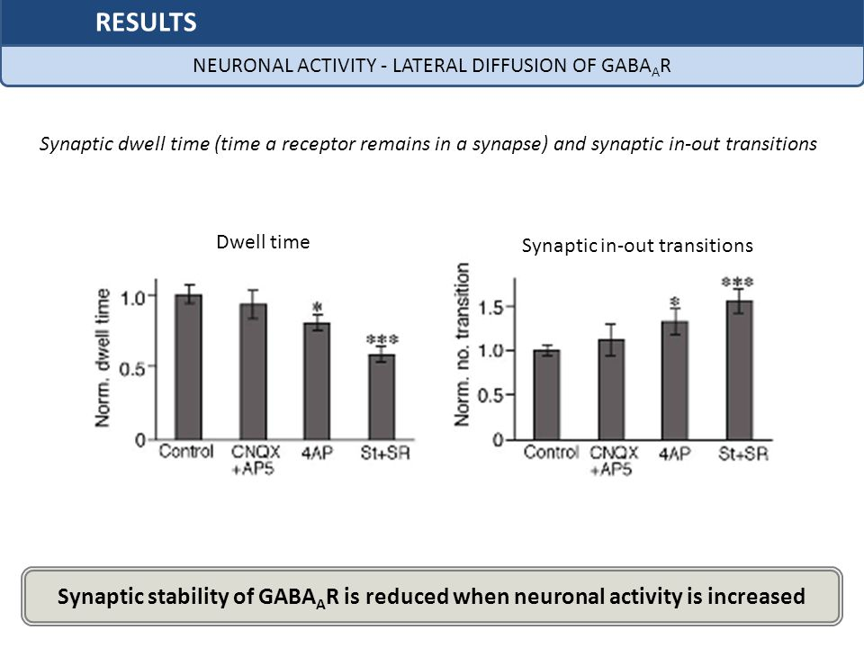NEURONAL ACTIVITY - LATERAL DIFFUSION OF GABAAR