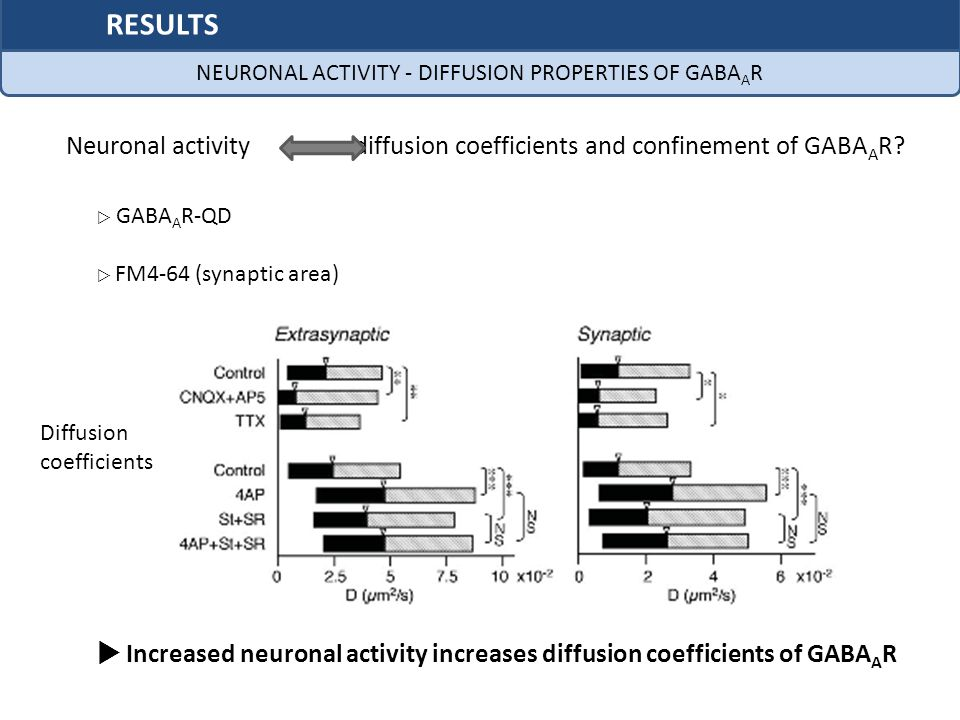 NEURONAL ACTIVITY - DIFFUSION PROPERTIES OF GABAAR