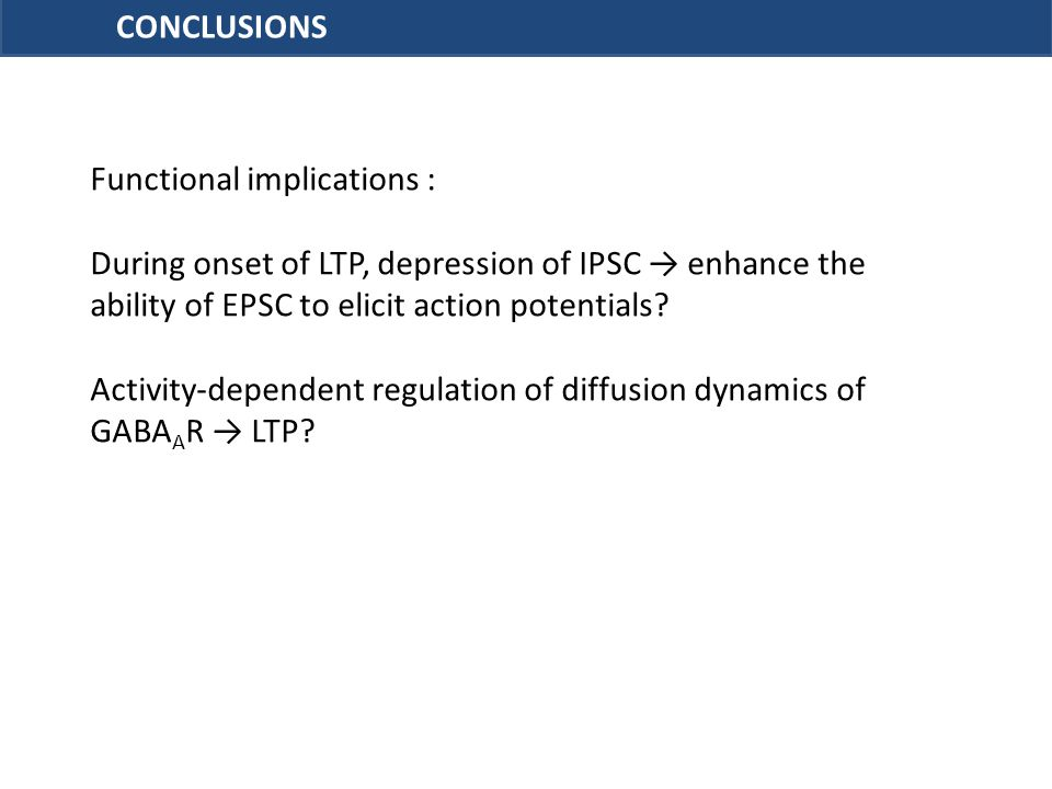CONCLUSIONS Functional implications : During onset of LTP, depression of IPSC → enhance the ability of EPSC to elicit action potentials