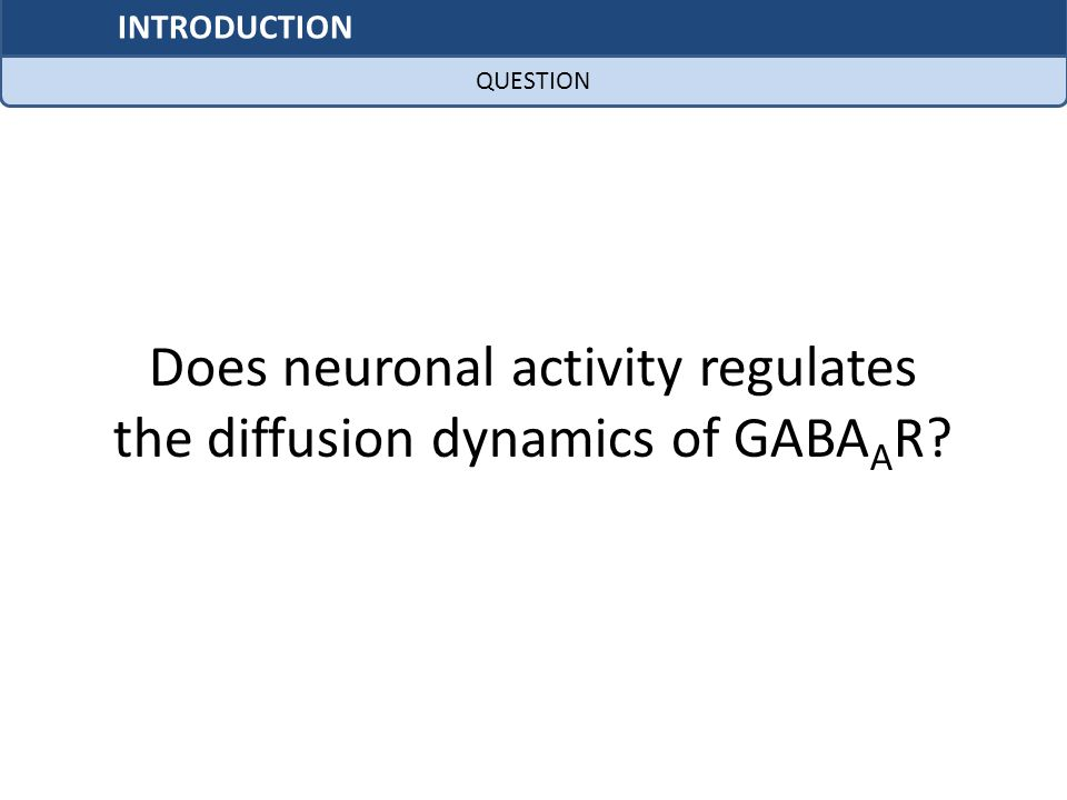 Does neuronal activity regulates the diffusion dynamics of GABAAR