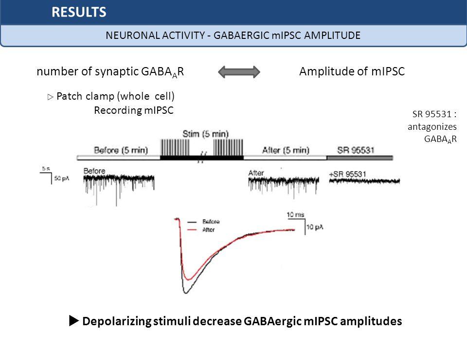  Depolarizing stimuli decrease GABAergic mIPSC amplitudes