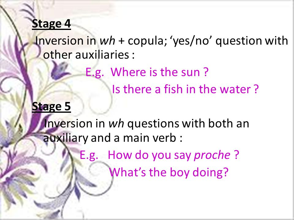 Stage 4 Inversion in wh + copula; 'yes/no' question with other auxiliaries : E.g.
