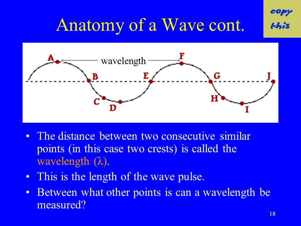 Anatomy of a Wave cont. wavelength. The distance between two consecutive similar points (in this case two crests) is called the wavelength (λ).