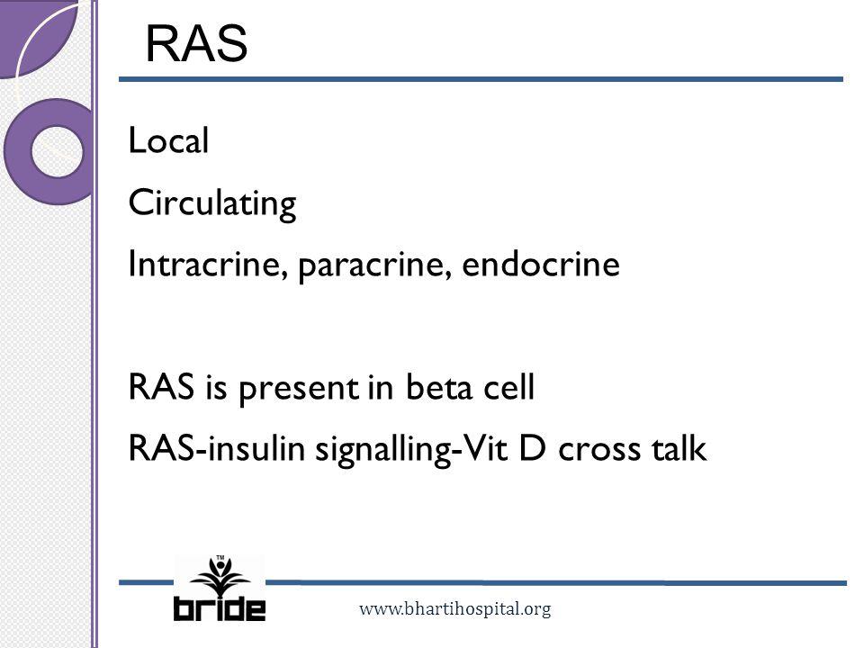RAS Local Circulating Intracrine, paracrine, endocrine RAS is present in beta cell RAS-insulin signalling-Vit D cross talk