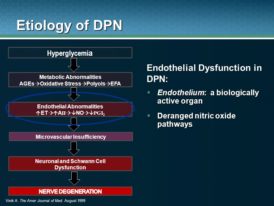 Etiology of DPN Endothelial Dysfunction in DPN: Hyperglycemia