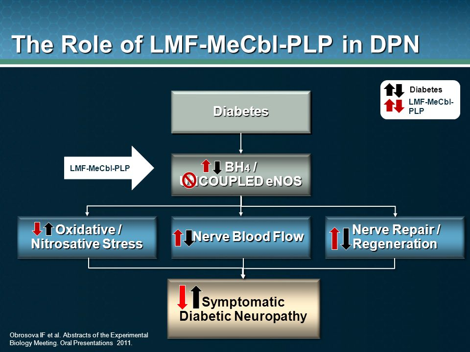 The Role of LMF-MeCbl-PLP in DPN