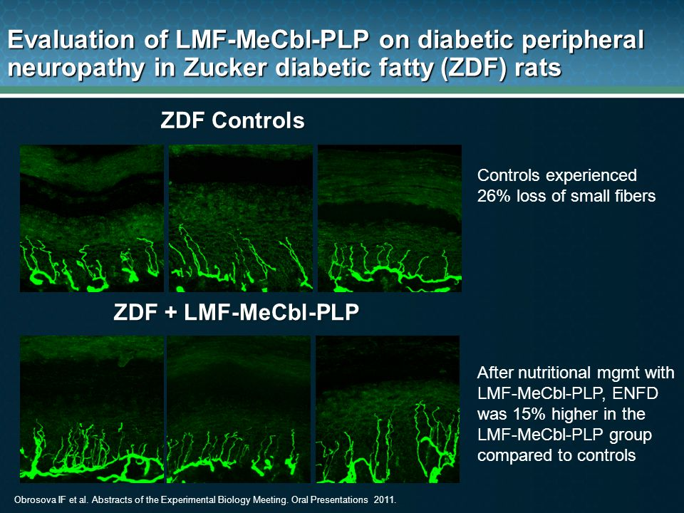 Evaluation of LMF-MeCbl-PLP on diabetic peripheral neuropathy in Zucker diabetic fatty (ZDF) rats