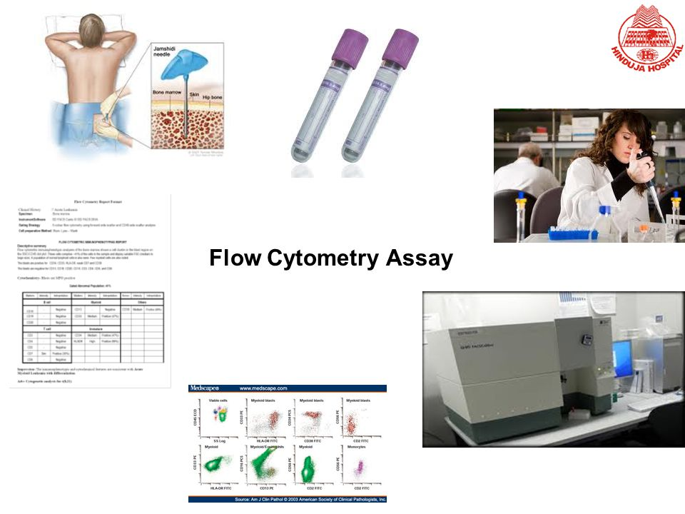 Flow Cytometry Assay