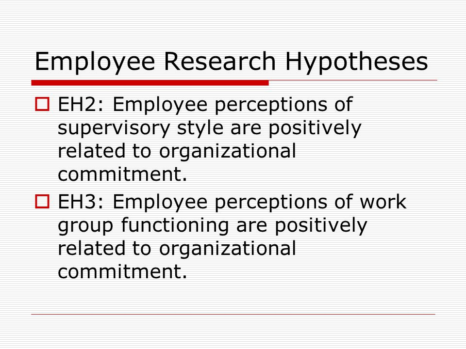 Employee Research Hypotheses