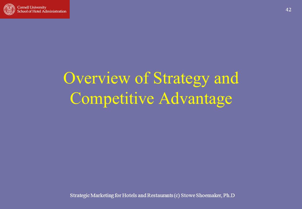 Overview of Strategy and Competitive Advantage
