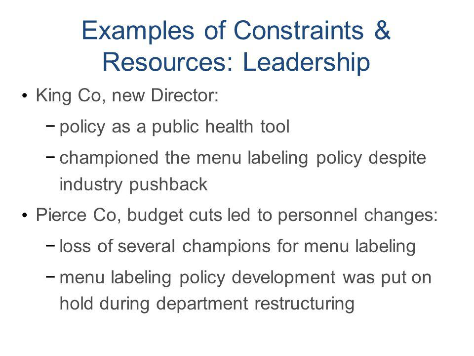 Examples of Constraints & Resources: Leadership