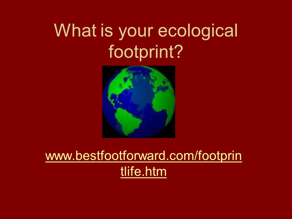 What is your ecological footprint