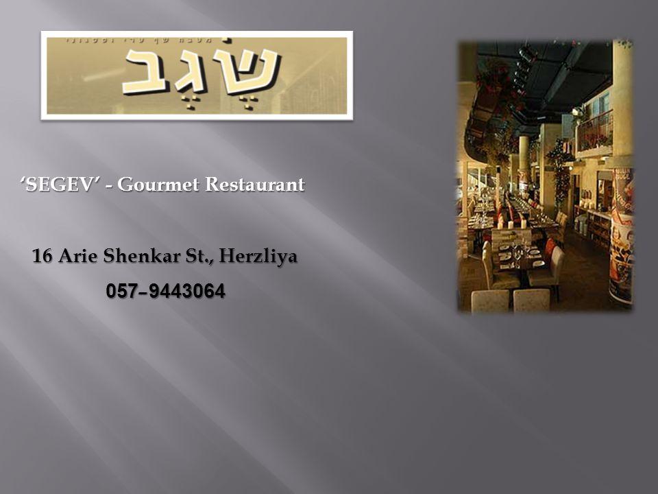 16 Arie Shenkar St., Herzliya