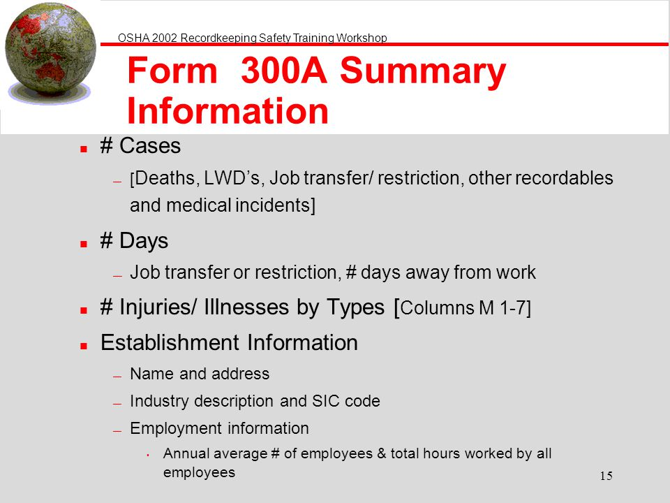 Form 300A Summary Information