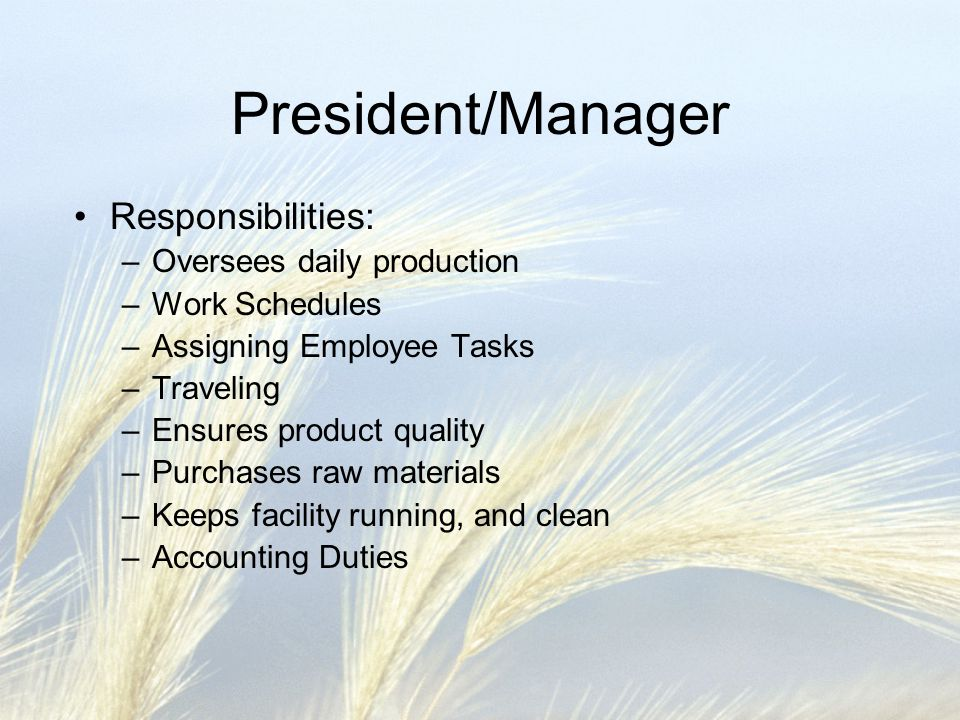President/Manager Responsibilities: Oversees daily production