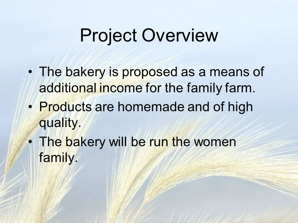 Project Overview The bakery is proposed as a means of additional income for the family farm. Products are homemade and of high quality.