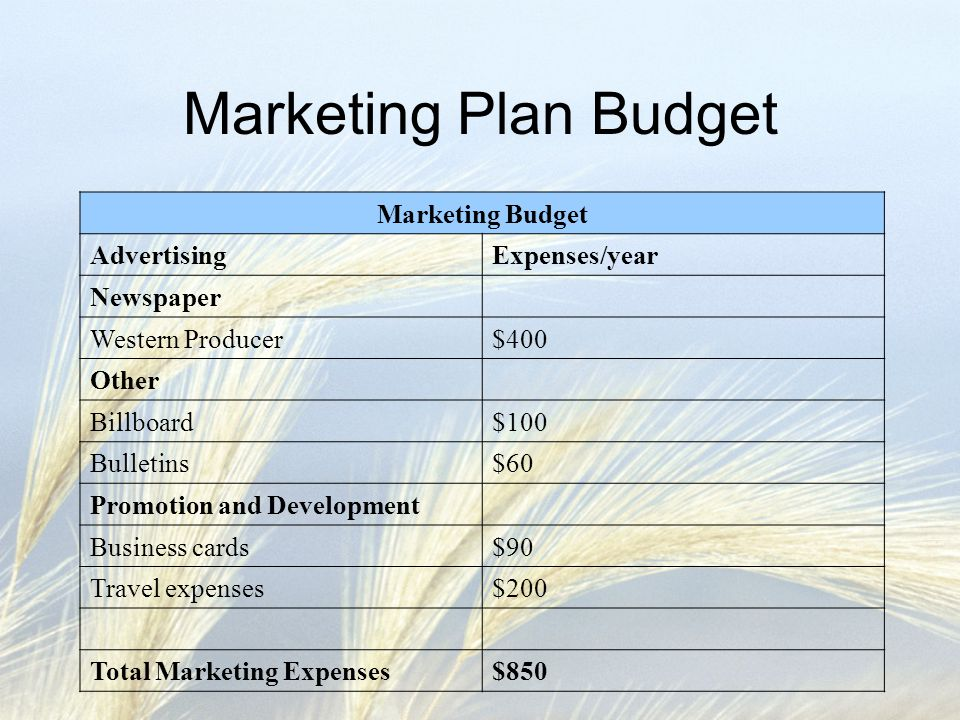 Marketing Plan Budget Marketing Budget Advertising Expenses/year