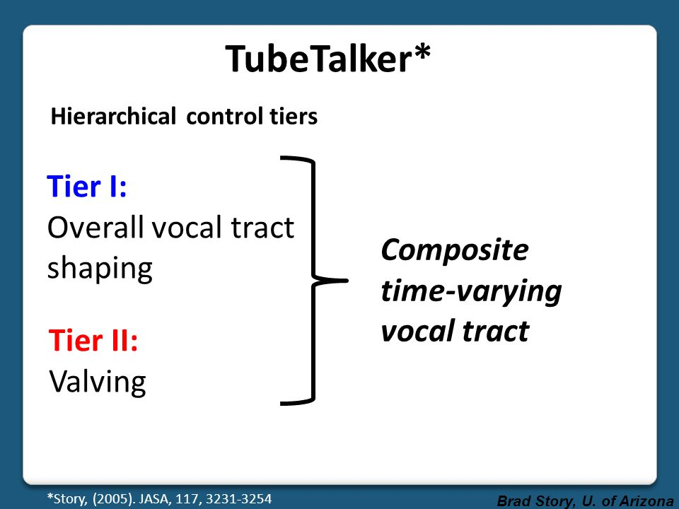 TubeTalker* Tier I: Overall vocal tract shaping