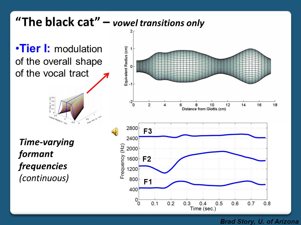 The black cat – vowel transitions only