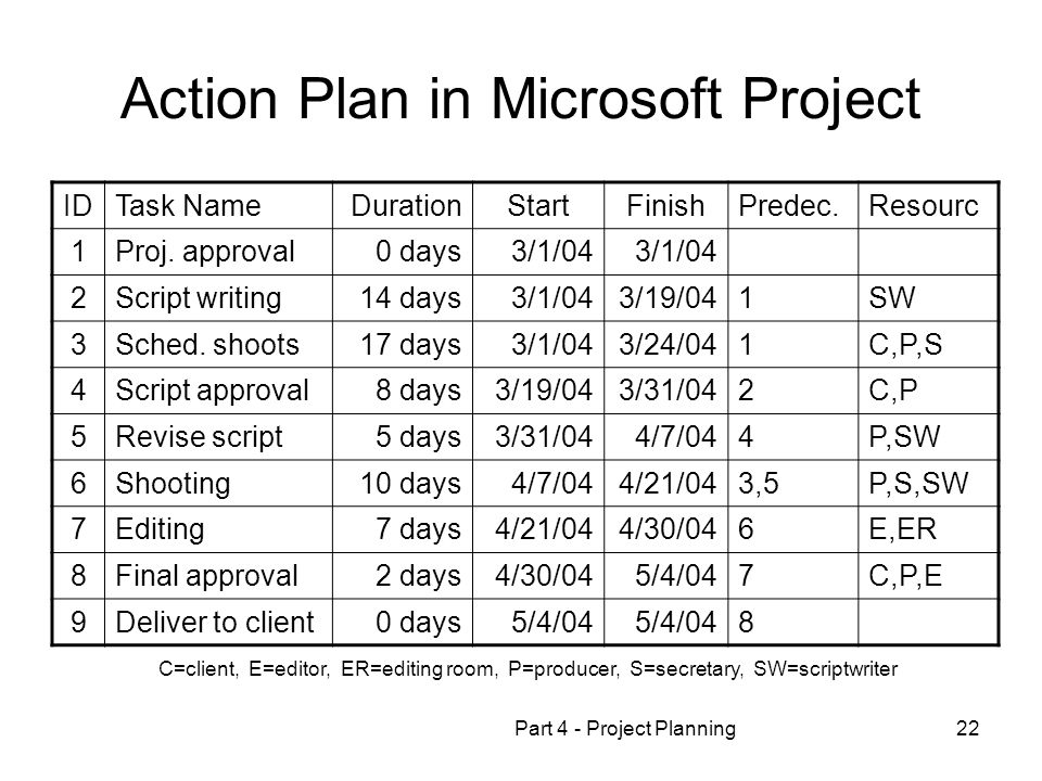 Action Plan in Microsoft Project