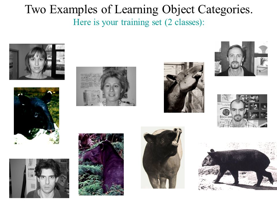 Two Examples of Learning Object Categories.