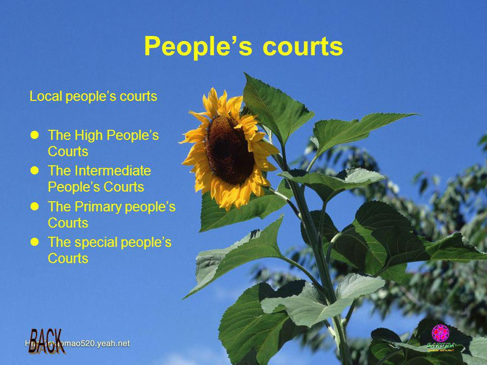 People's courts Local people's courts The High People's Courts